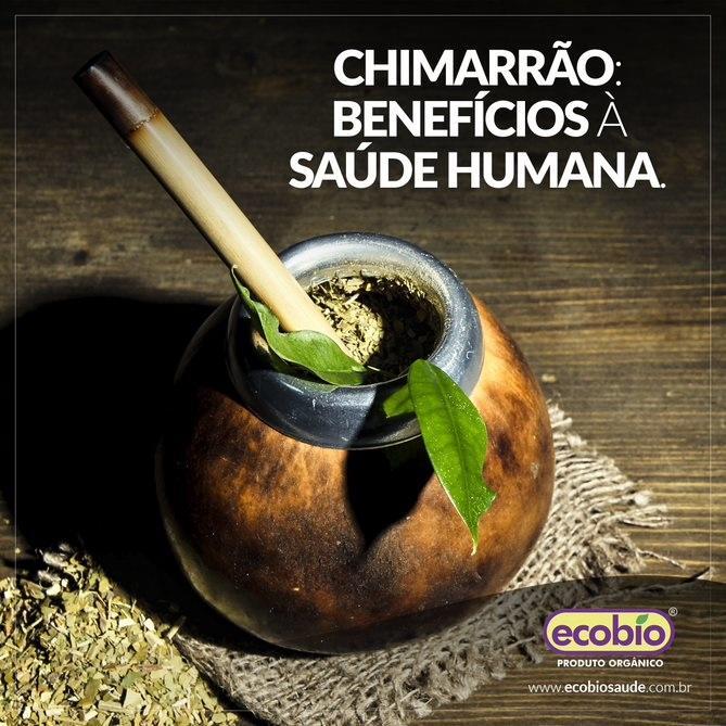 Chimarrão: benefícios à saúde humana