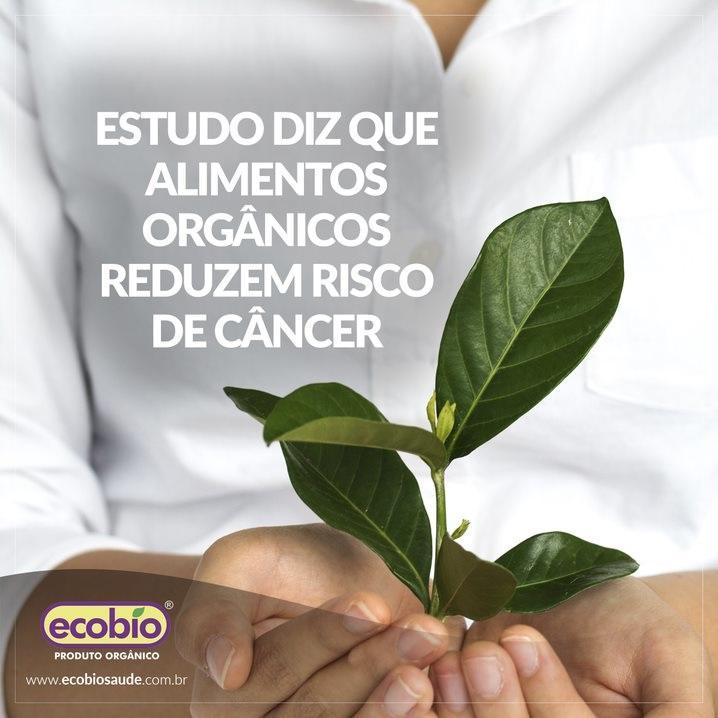 Estudo mostra que alimentos orgânicos reduzem risco de câncer
