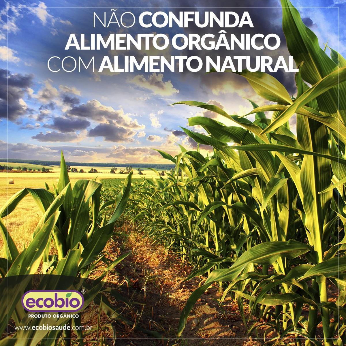 Não confunda alimento orgânico com alimento natural