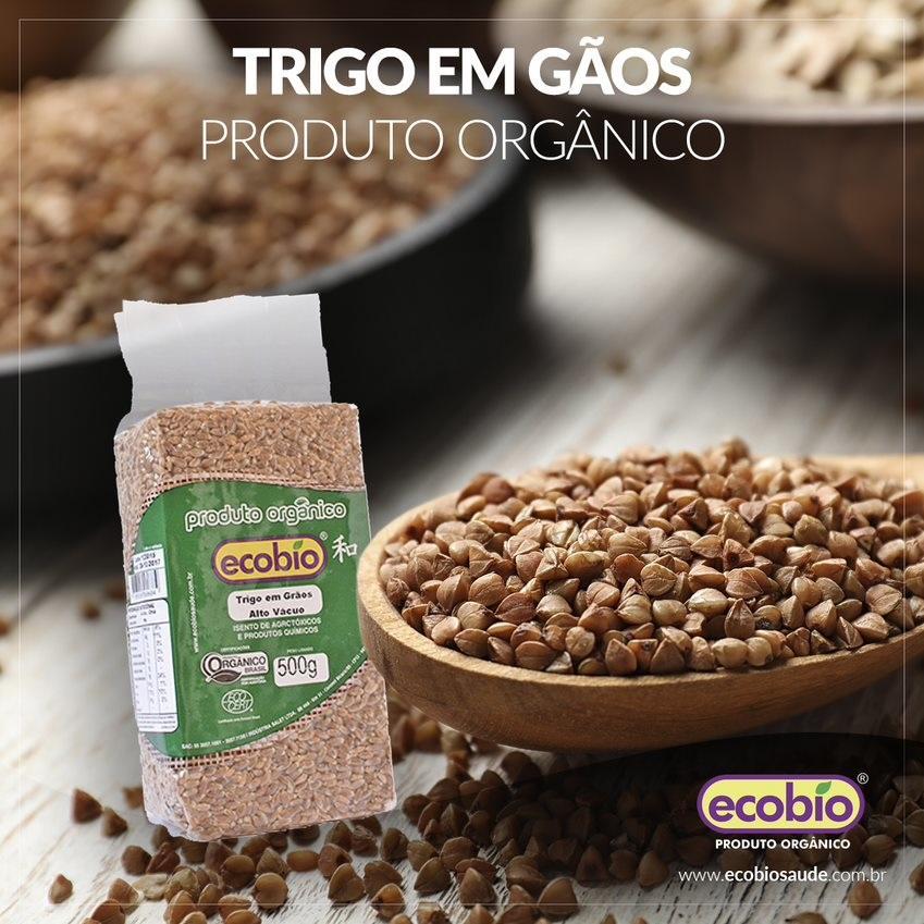 Trigo em Grãos Alto Vácuo Produto Orgânico