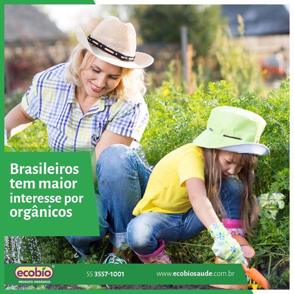 Brasileiros têm maior interesse por orgânicos