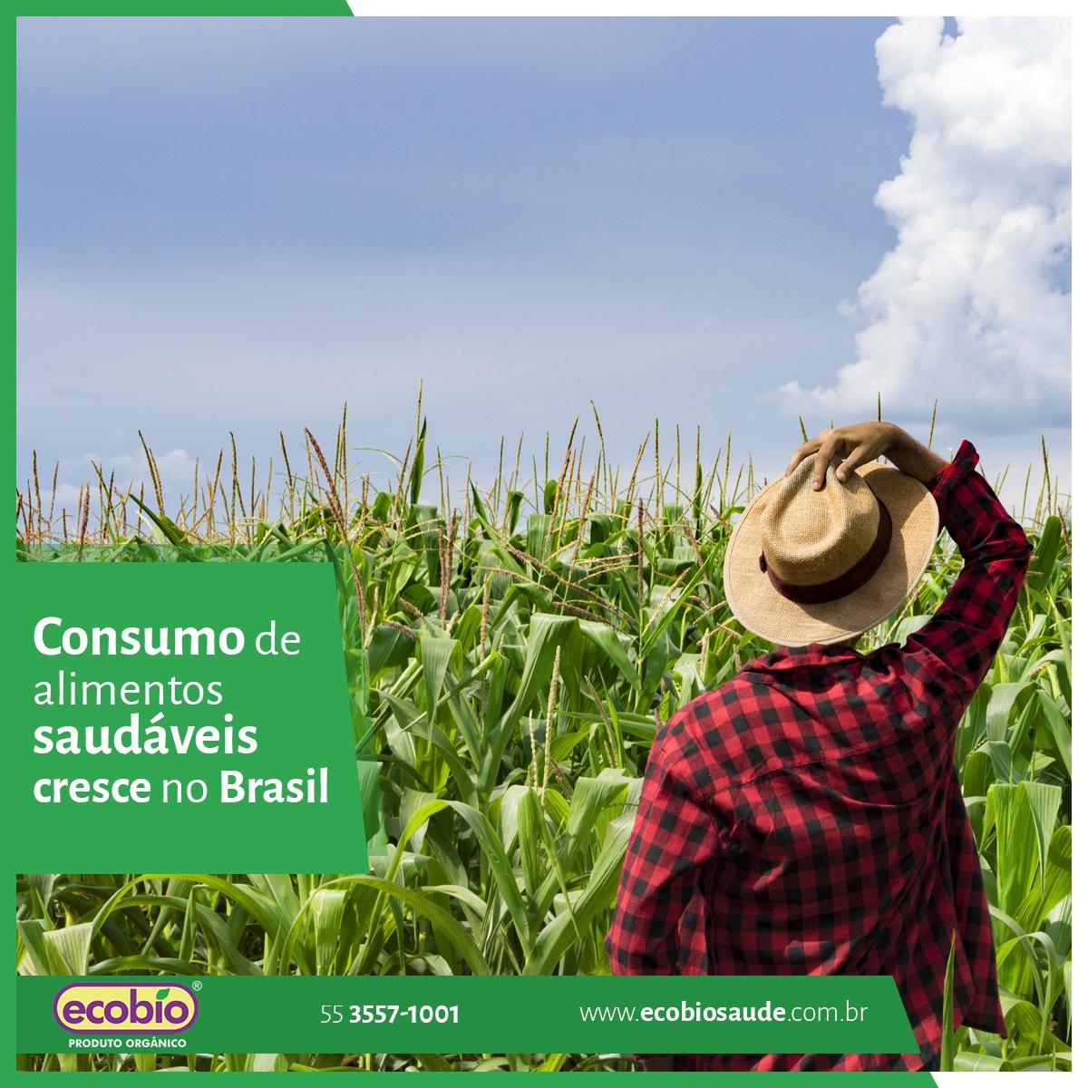 Consumo de alimentos saudáveis cresce no Brasil