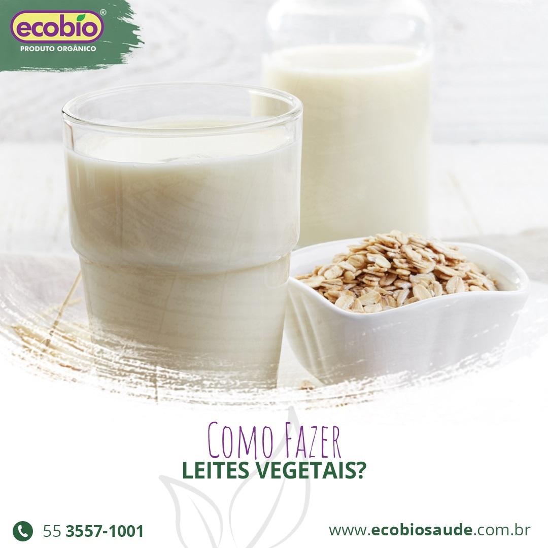 Como fazer leites vegetais?