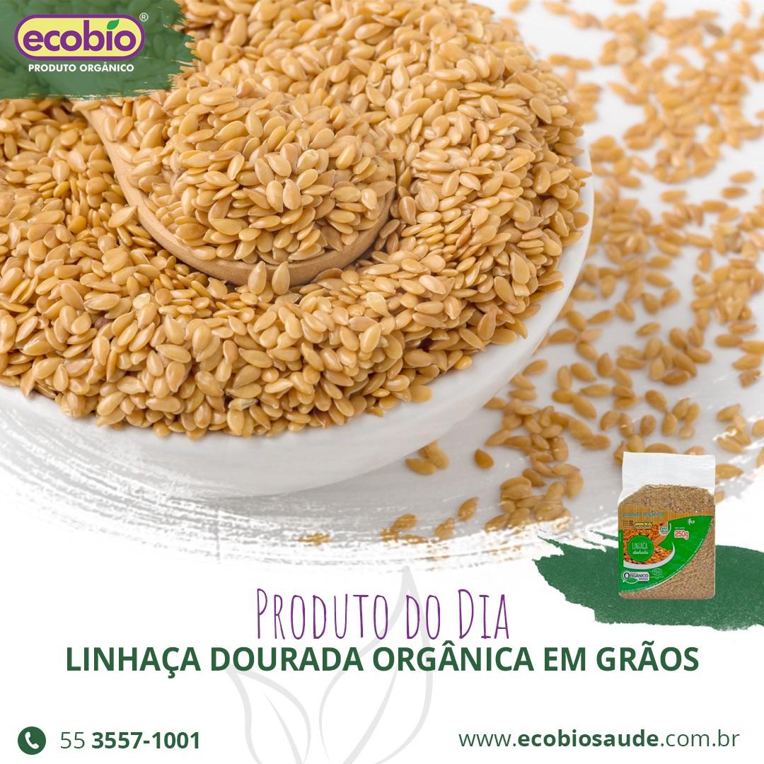 Linhaça Dourada Orgânica em grãos