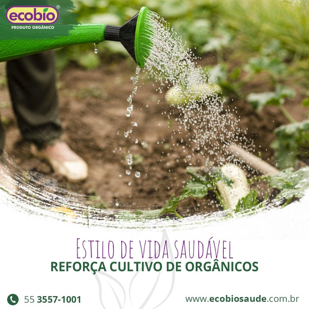 Estilo de vida saudável reforça cultivo de orgânicos